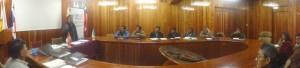 Comité de Vigilancia y Control de Presupuesto Participativo: transferencia a la gestión 2012.