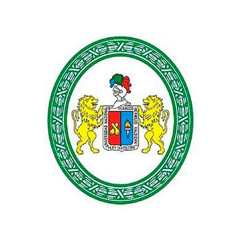 Universidad Nacional Hermilio Valdizán final