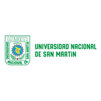 Universidad Nacional de San Martínfinal